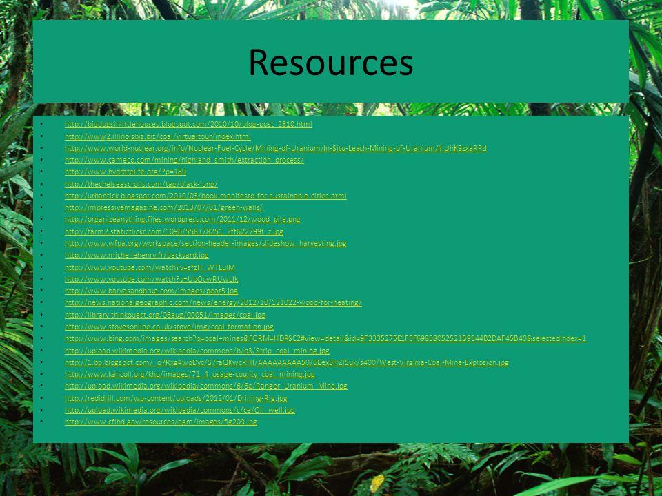 Resources http://bigdogsinlittlehouses.blogspot.com/2010/10/blog-post_2810.html http://www2.illinoisbiz.biz/coal/virtualtour/index.html http://www.wor