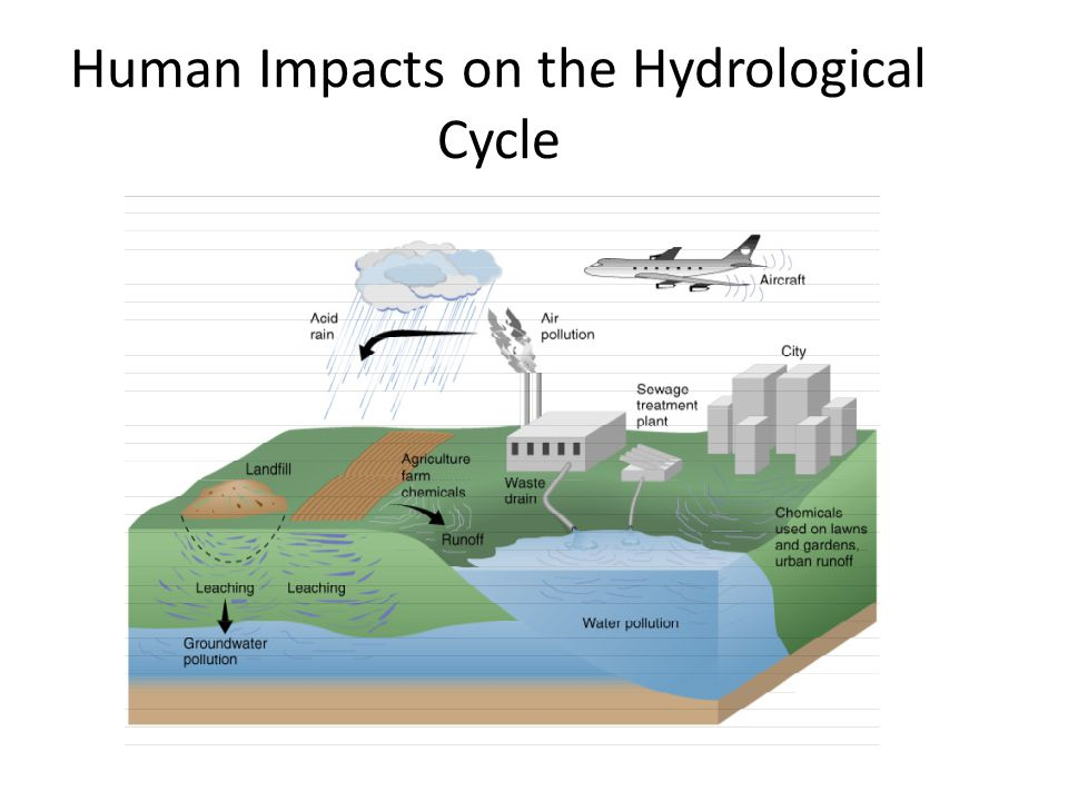 Human Impacts on the Hydrological Cycle
