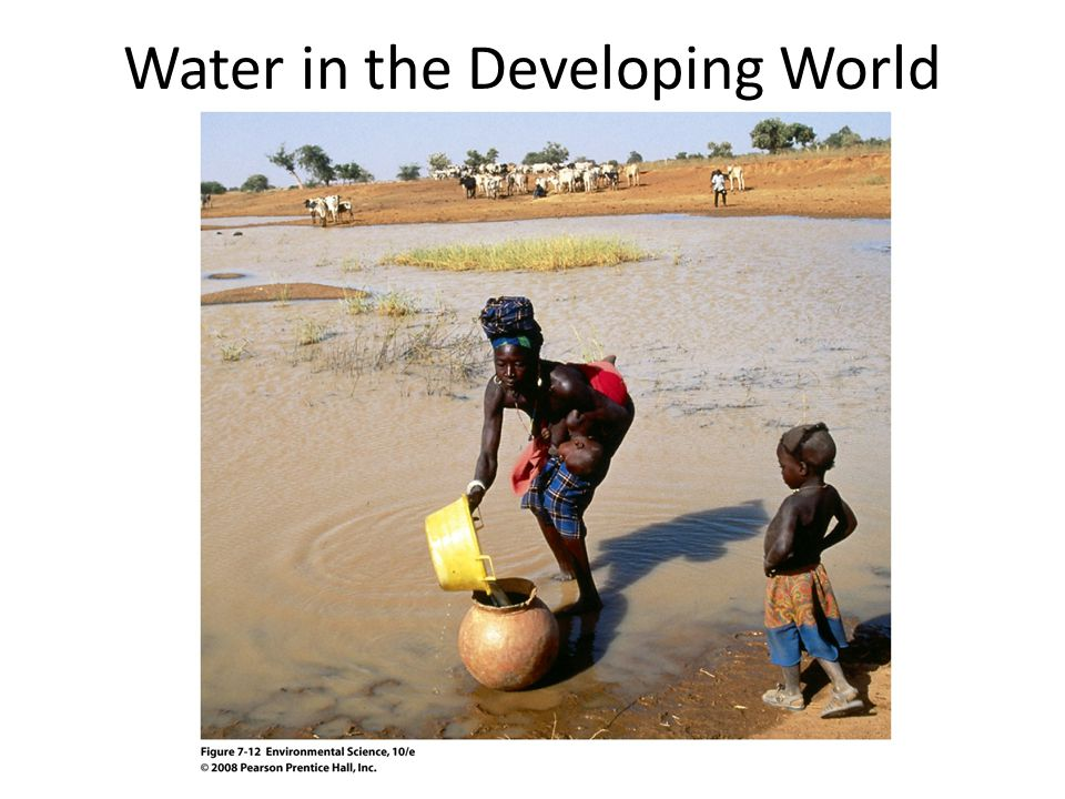 Water in the Developing World