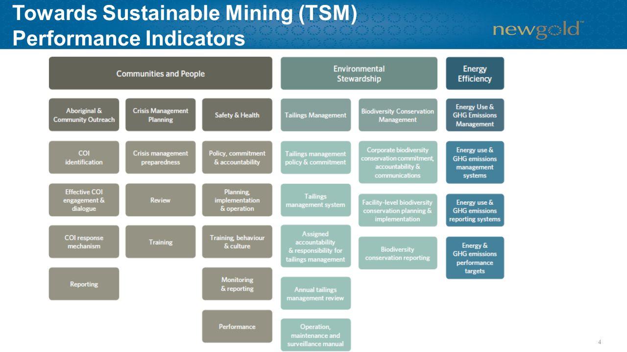 Towards Sustainable Mining (TSM) Performance Indicators 4