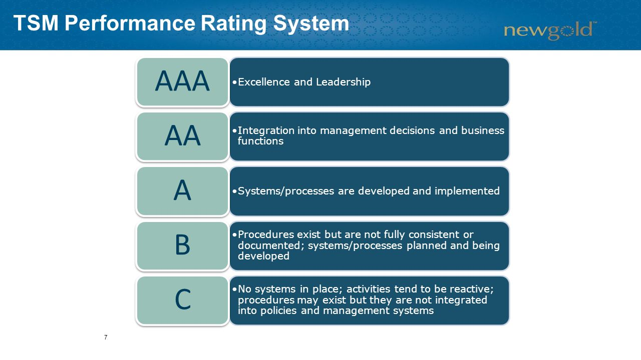 Excellence and Leadership AAA Integration into management decisions and business functions AA Systems/processes are developed and implemented A Procedures exist but are not fully consistent or documented; systems/processes planned and being developed B No systems in place; activities tend to be reactive; procedures may exist but they are not integrated into policies and management systems C TSM Performance Rating System 7