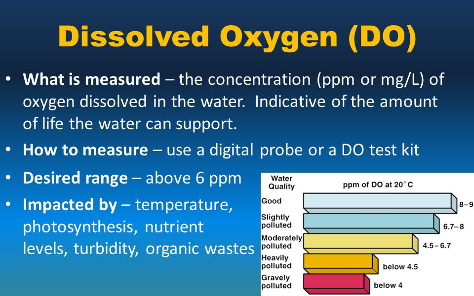 Dissolved Oxygen (DO) What is measured – the concentration (ppm or mg/L) of oxygen dissolved in the water. Indicative of the amount of life the water