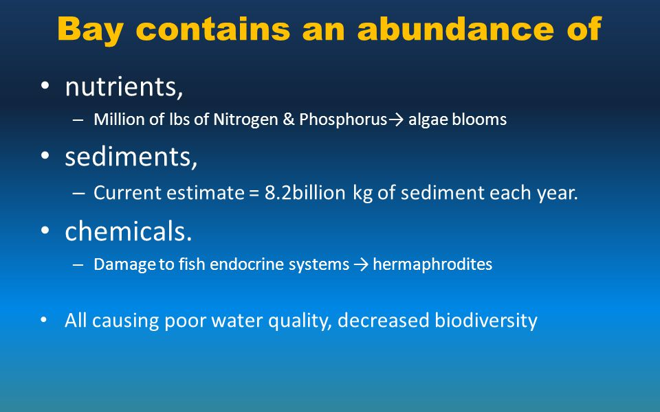 Bay contains an abundance of nutrients, – Million of lbs of Nitrogen & Phosphorus→ algae blooms sediments, – Current estimate = 8.2billion kg of sedim