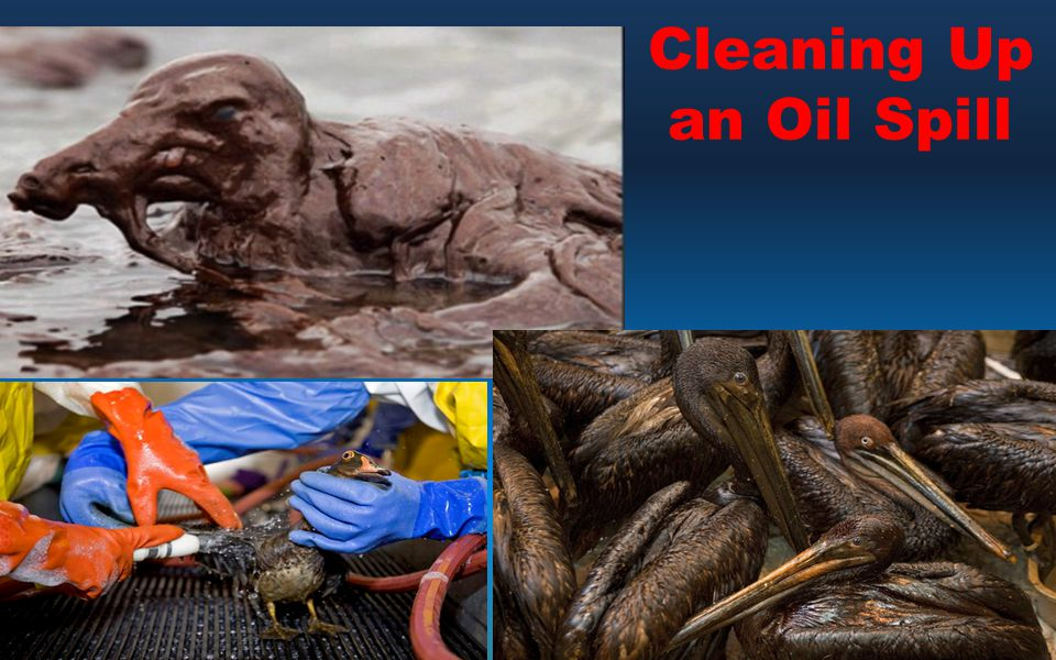Cleaning Up an Oil Spill