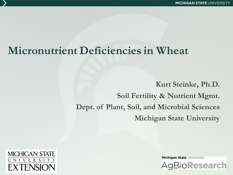 General Comments on Micronutrients Micronutrients defined as: Nutrients required by a plant for growth Amount needed is very small (<100 mg/kg) compared to macronutrients (primary & secondary) Deficiency can be just as yield limiting as a deficiency of a macronutrient K.