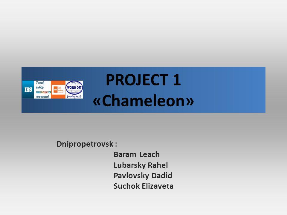 PROJECT 1 «Chameleon» Dnipropetrovsk : Baram Leach Lubarsky Rahel Pavlovsky Dadid Suchok Elizaveta