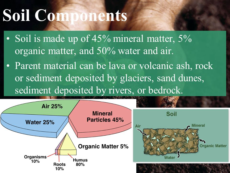 Soil Components Soil is made up of 45% mineral matter, 5% organic matter, and 50% water and air. Parent material can be lava or volcanic ash, rock or