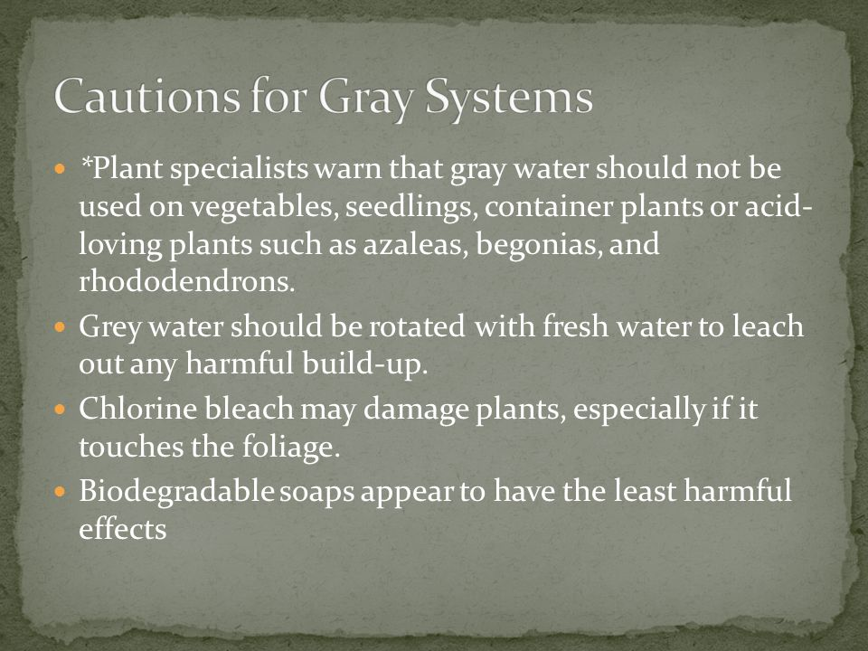 *Plant specialists warn that gray water should not be used on vegetables, seedlings, container plants or acid- loving plants such as azaleas, begonias