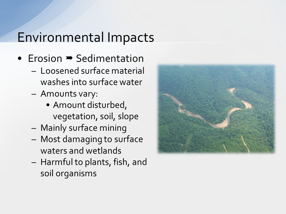 Toxic Compound Leachate –Compounds used to extract resources –Usually stored in retention ponds ponds leak into groundwater Animals attracted to pond –Slag leach Compounds leak from treated rock –Toxic to all organisms – plants, fish, soil organisms Environmental Impact