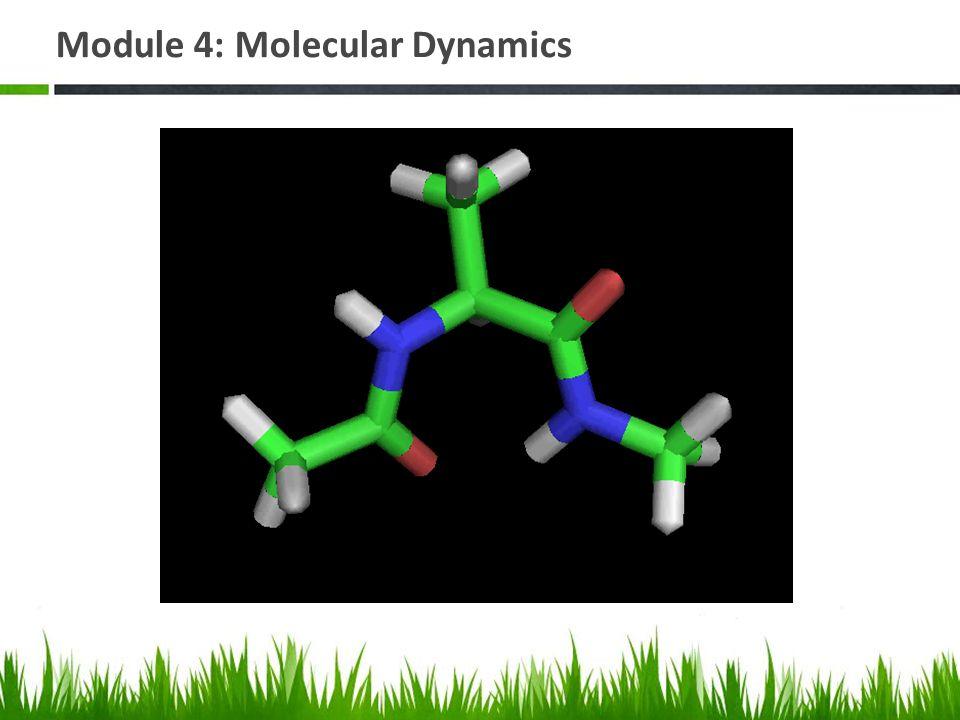 Module 4: Molecular Dynamics