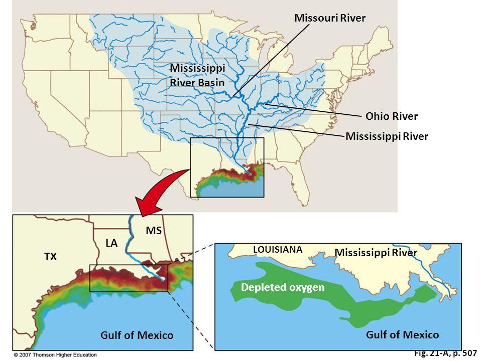 Fig. 21-A, p. 507 Mississippi River Basin TX MS LA Mississippi River Gulf of Mexico Ohio River Mississippi River Missouri River Depleted oxygen LOUISI