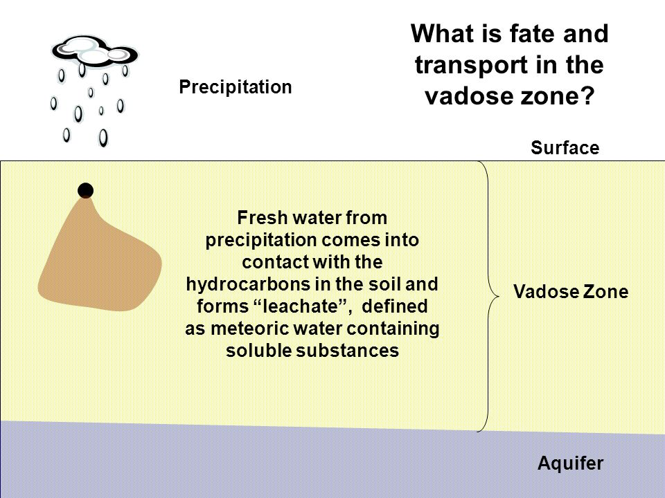 What is fate and transport in the vadose zone.
