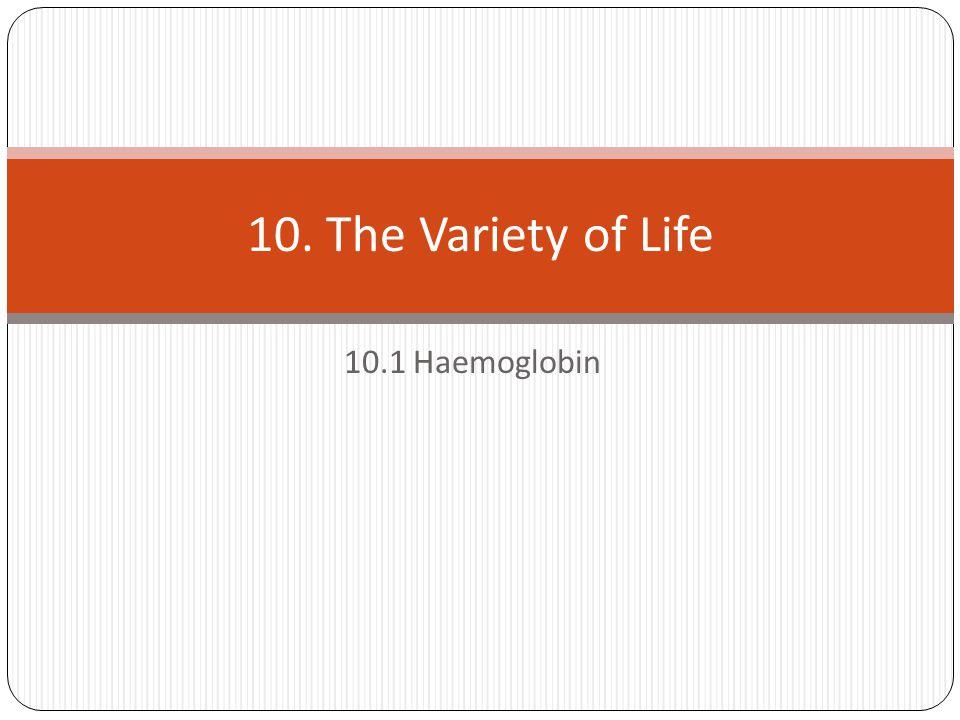 10.1 Haemoglobin 10. The Variety of Life