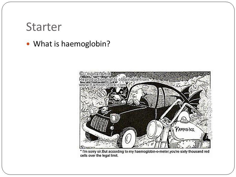 Starter What is haemoglobin