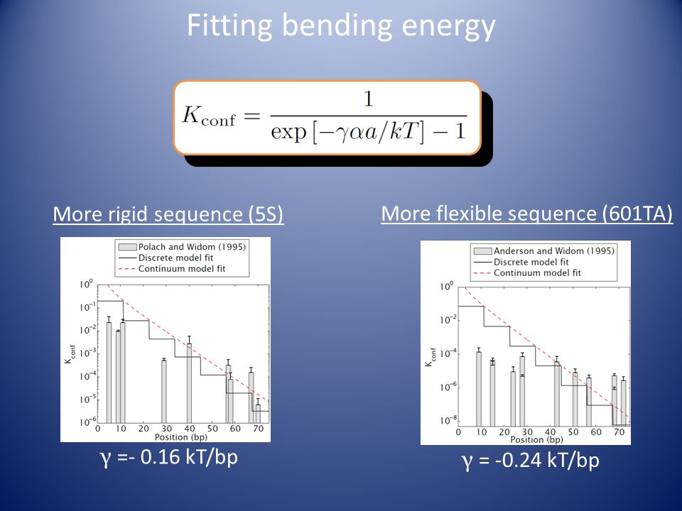 γ = -0.24 kT/bp More flexible sequence (601TA) More rigid sequence (5S) γ =- 0.16 kT/bp Fitting bending energy