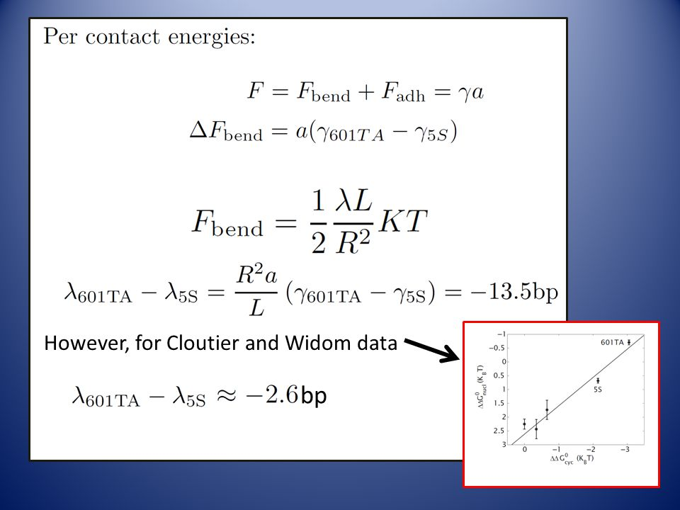 b With R =13.5bp, a=10.5bp, L=147bp However, for Cloutier and Widom data bp