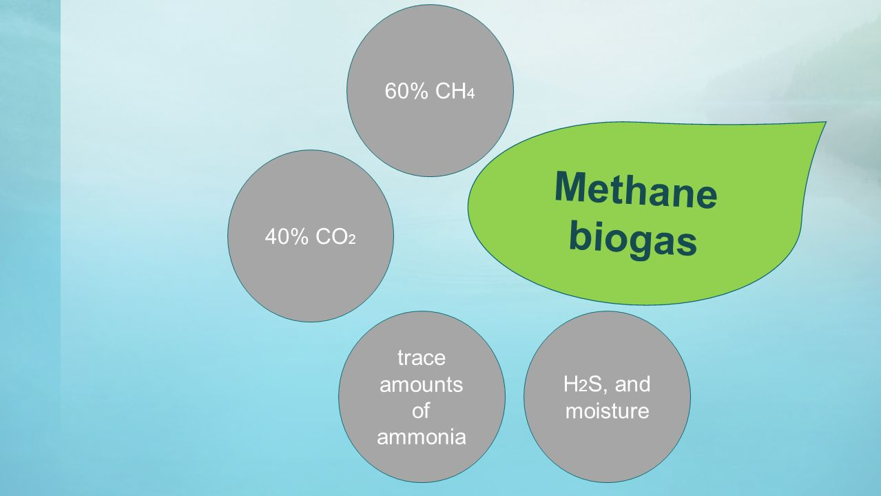 H 2 S, and moisture 40% CO 2 60% CH 4 trace amounts of ammonia Methane biogas