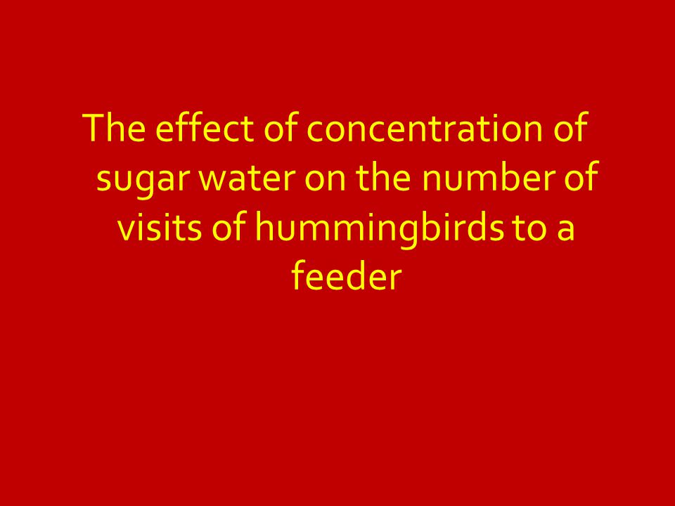 The effect of concentration of sugar water on the number of visits of hummingbirds to a feeder