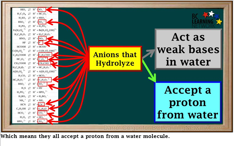 Which means they all accept a proton from a water molecule. Act as weak bases in water Accept a proton from water Anions that Hydrolyze