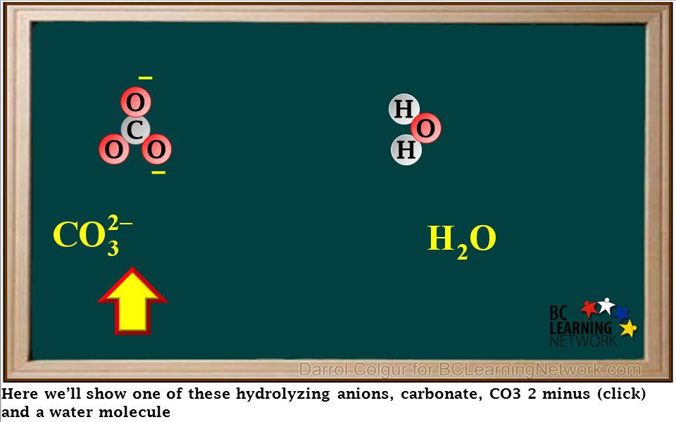 Here we'll show one of these hydrolyzing anions, carbonate, CO3 2 minus (click) and a water molecule – O C O O – H H O