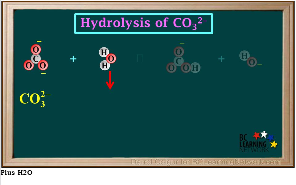 Plus H2O ++  Hydrolysis of CO 3 2–