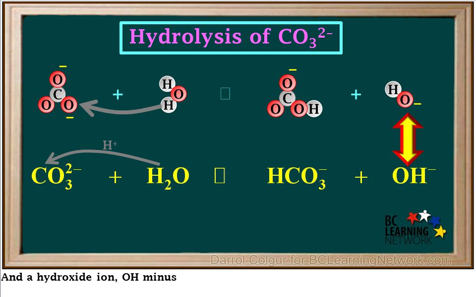 And a hydroxide ion, OH minus ++  Hydrolysis of CO 3 2– H+H+