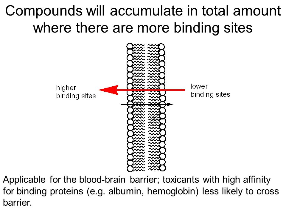 Compounds will accumulate in total amount where there are more binding sites Applicable for the blood-brain barrier; toxicants with high affinity for