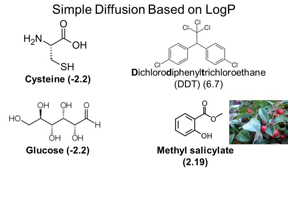 Simple Diffusion Based on LogP Dichlorodiphenyltrichloroethane (DDT) (6.7) Methyl salicylate (2.19) Cysteine (-2.2) Glucose (-2.2)