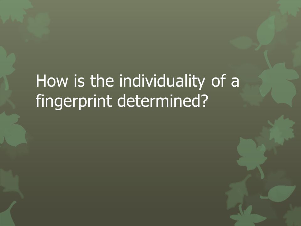 How is the individuality of a fingerprint determined?