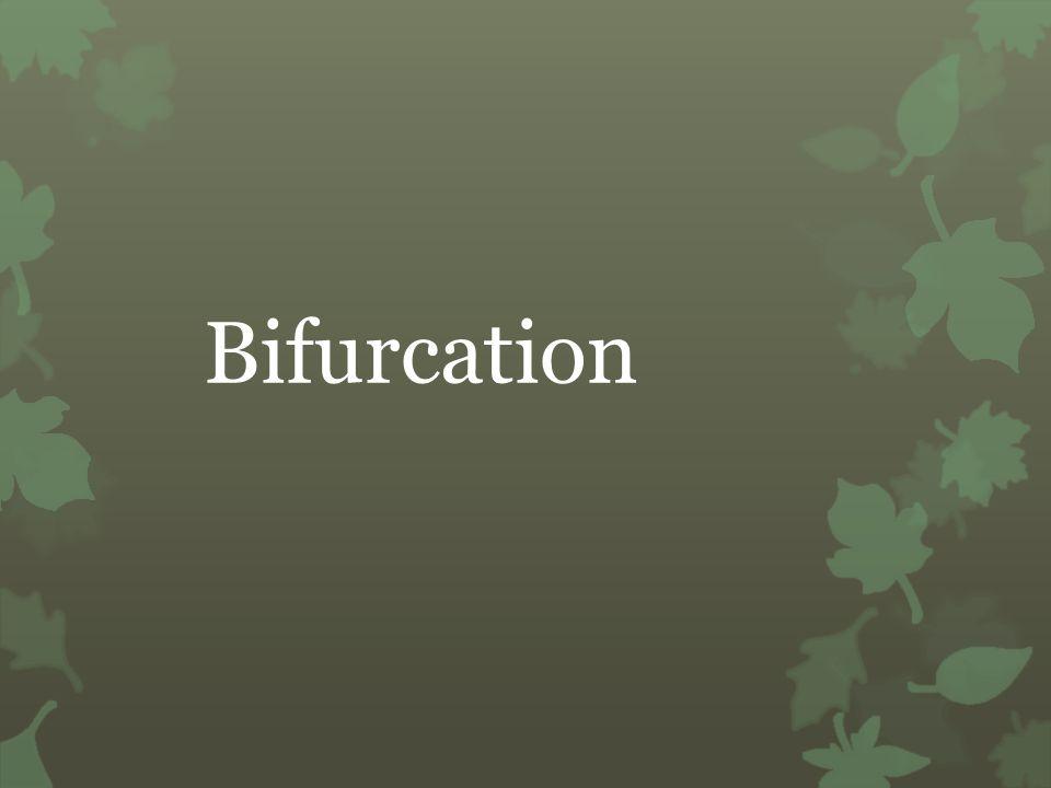 Bifurcation