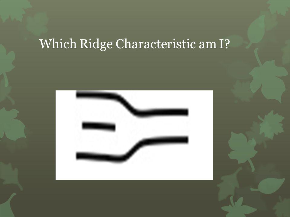 Which Ridge Characteristic am I?