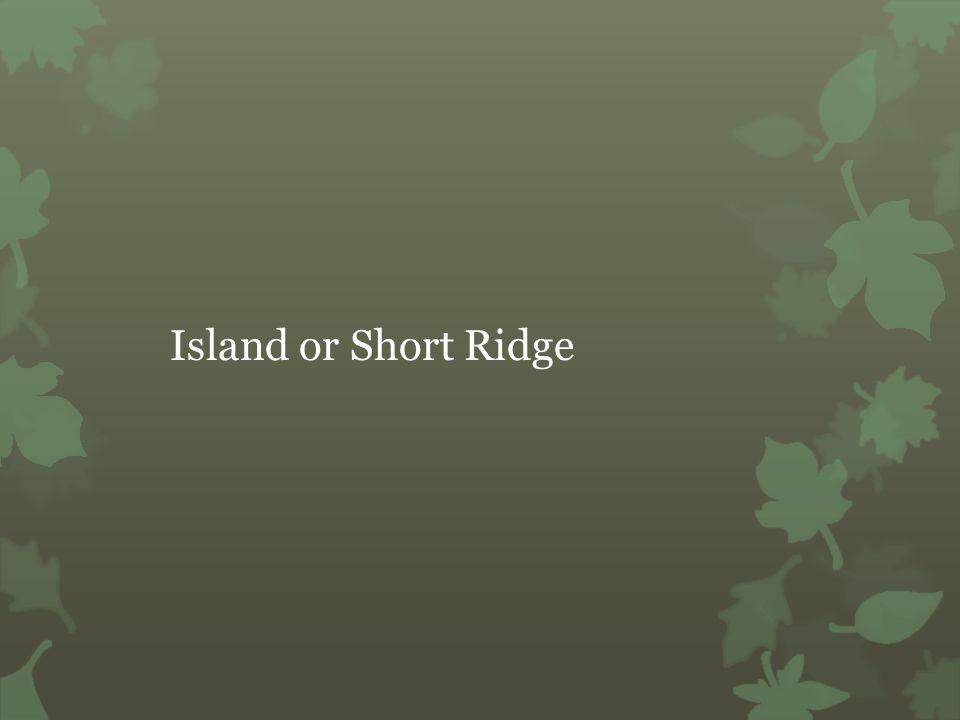 Island or Short Ridge