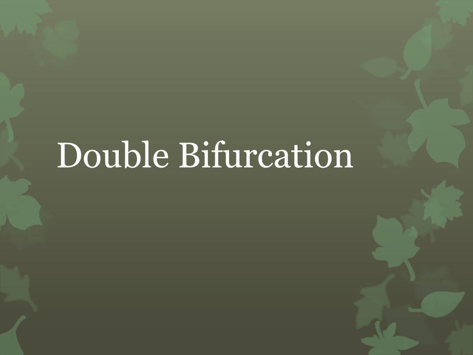 Double Bifurcation