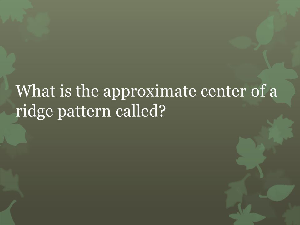 What is the approximate center of a ridge pattern called?