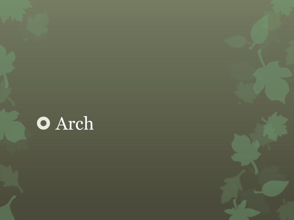  Arch