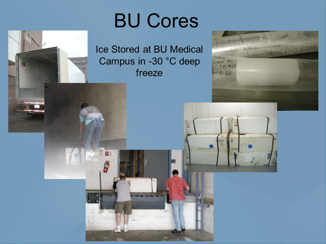 BU Cores Ice Stored at BU Medical Campus in -30 °C deep freeze