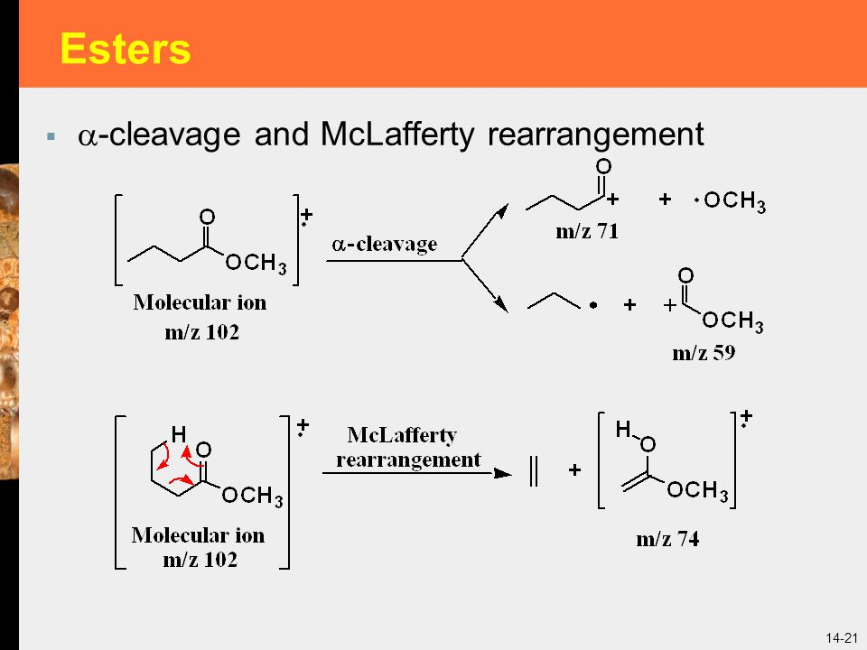 14-21 Esters   -cleavage and McLafferty rearrangement