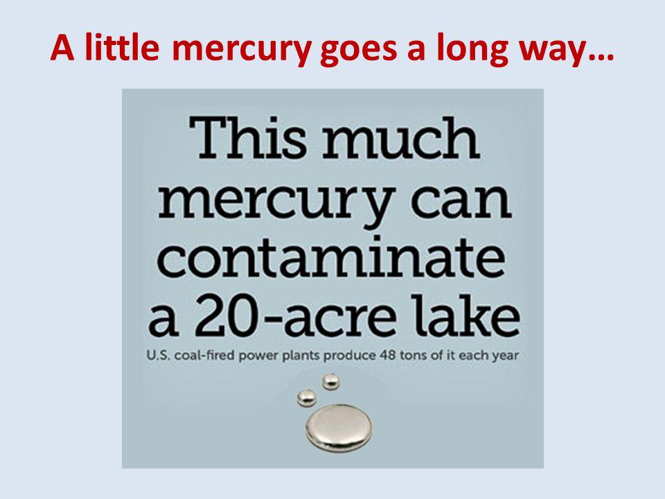 A little mercury goes a long way…