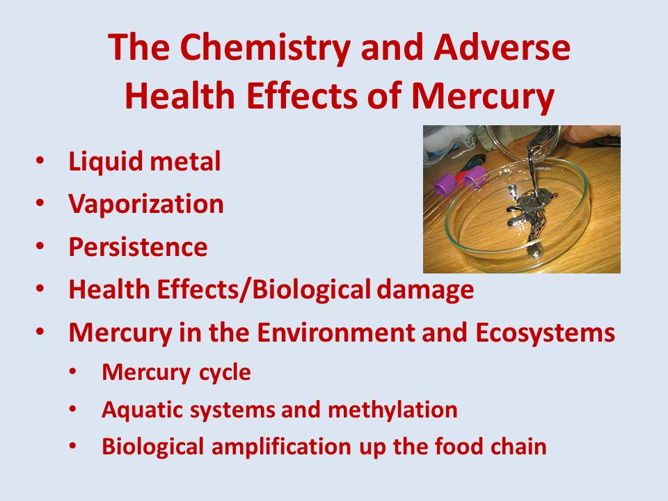 Methylmercury Exposure Methylmercury levels in freshwater fish vary with the level of deposition of mercury from the air Models suggest that about 70% of the mercury deposited into the ocean is re-emitted to the atmosphere, but also that methylmercury stays in the upper ocean for about 11 years Research indicates that mercury content in many marine animals is 12 times higher than pre-industrial levels.