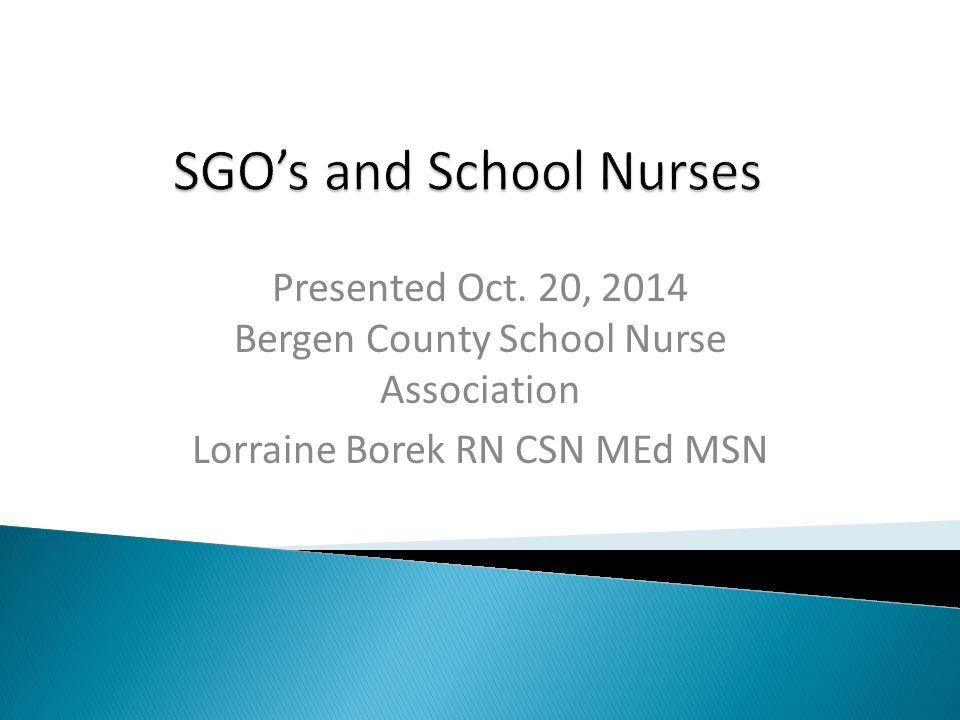 Presented Oct. 20, 2014 Bergen County School Nurse Association Lorraine Borek RN CSN MEd MSN