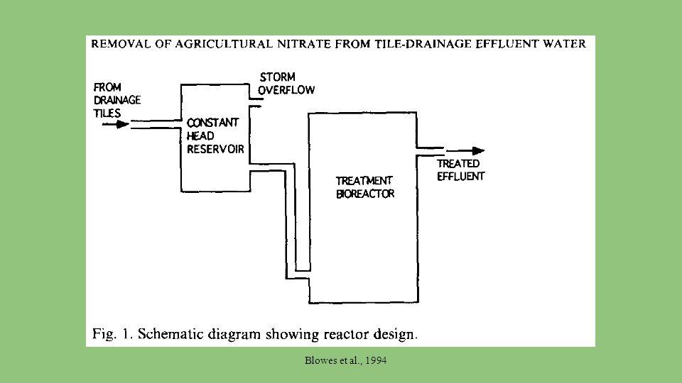 Blowes et al., 1994