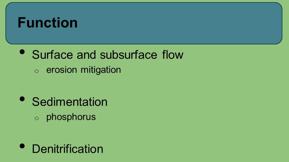 Function Surface and subsurface flow o erosion mitigation Sedimentation o phosphorus Denitrification
