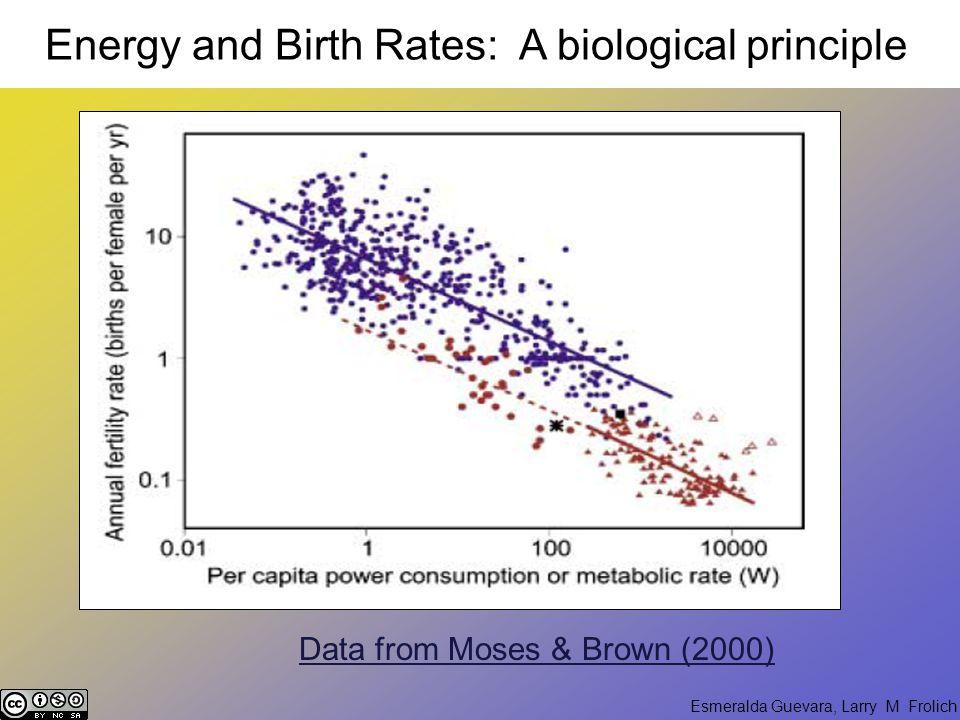 Esmeralda Guevara, Larry M Frolich DEMOGRAPHICS HIGH ENERGY USE Population Decline Examples: Italy, Greece, Spain, Suburban U.S.