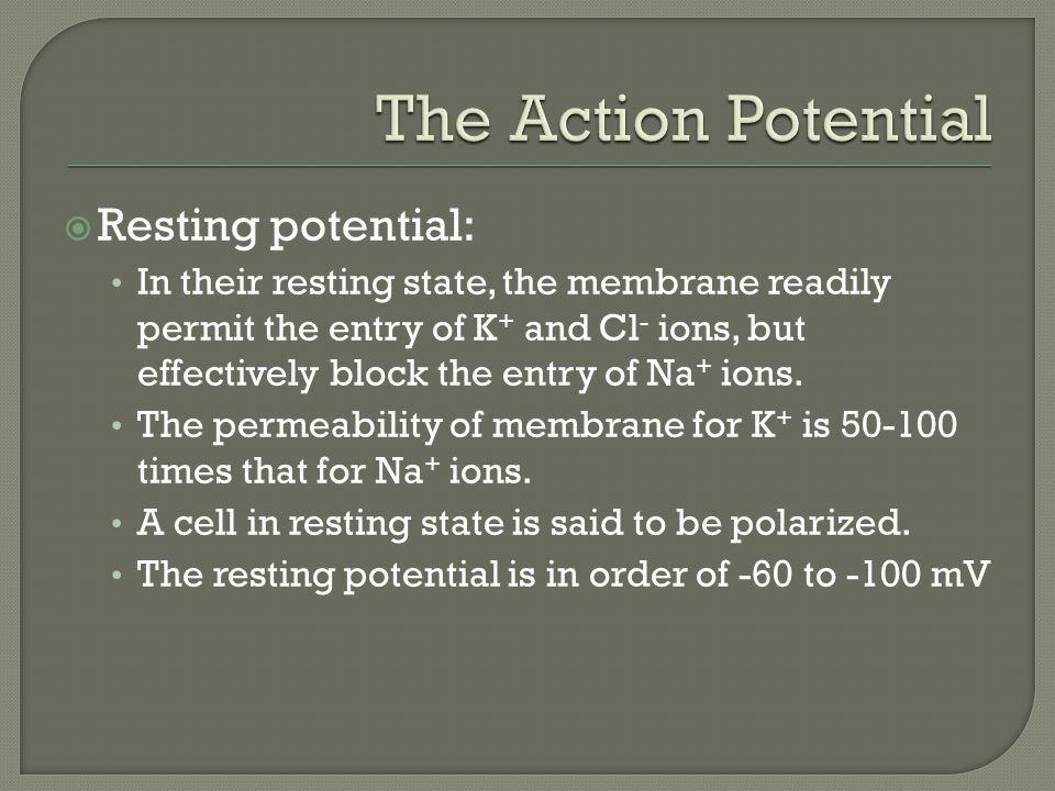  Resting potential: In their resting state, the membrane readily permit the entry of K + and Cl - ions, but effectively block the entry of Na + ions.