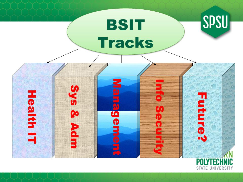 BSIT Tracks BSIT Tracks Health IT Sys & Adm Management Info Security Future