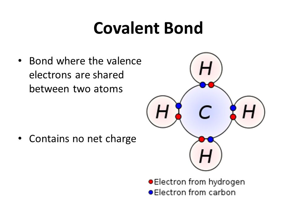 Covalent Bond Bond where the valence electrons are shared between two atoms Contains no net charge