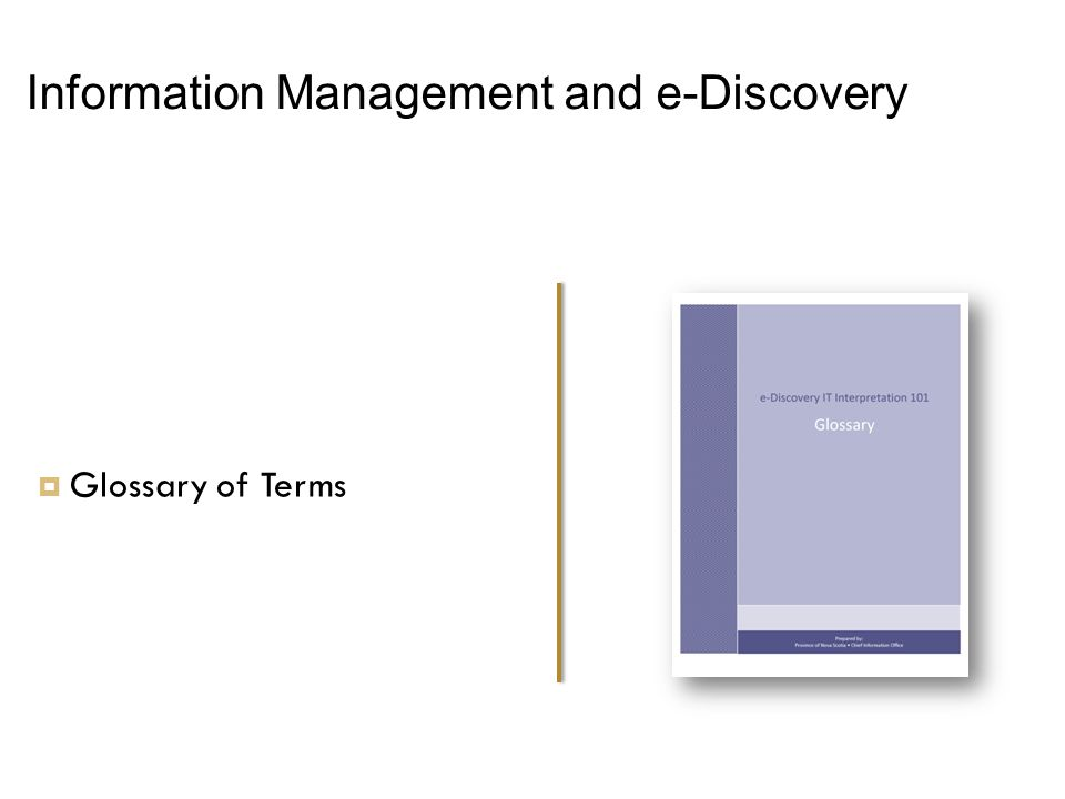 Information Management and e-Discovery  Glossary of Terms