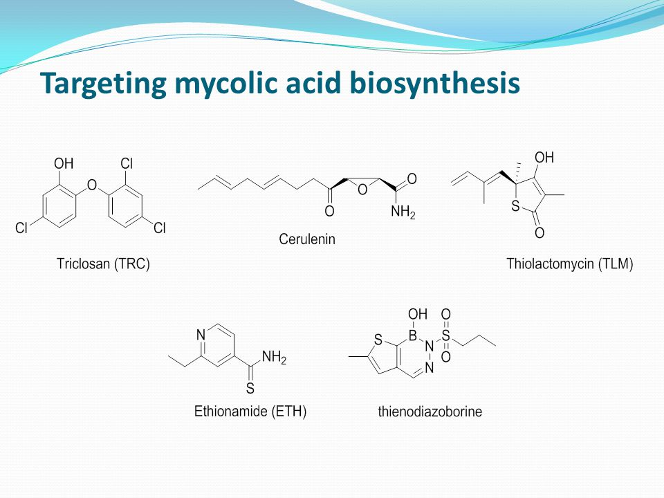 Targeting mycolic acid biosynthesis
