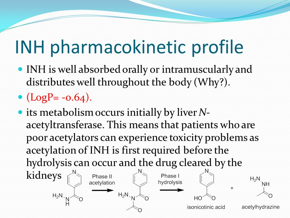 INH pharmacokinetic profile INH is well absorbed orally or intramuscularly and distributes well throughout the body (Why?).