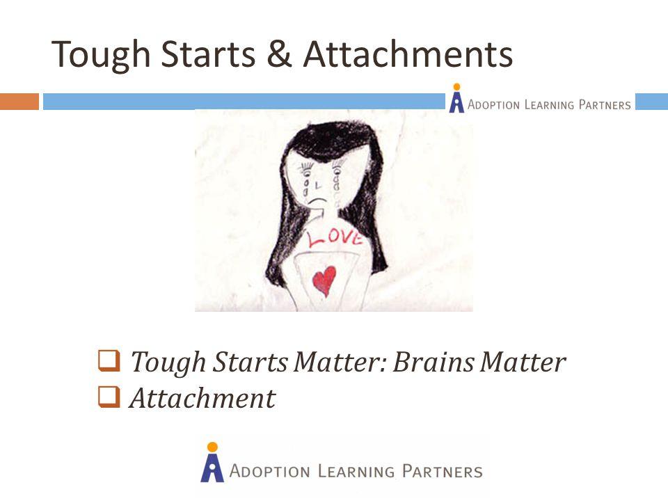 Tough Starts & Attachments  Tough Starts Matter: Brains Matter  Attachment